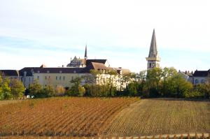 Vue sur les quartiers anciens du secteur sauvegardé et l'abbaye Saint Germain